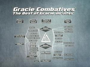 Flow Chart 格雷西格斗术 Gracie Combatives Blue Belt Qualification Course