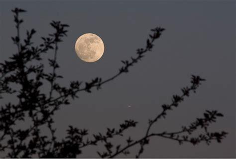 jardiner avec la lune comprendre le calendrier lunaire