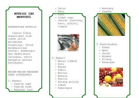 V Ibu Hamil Leaflet Nutrisi Ibu Menyusui