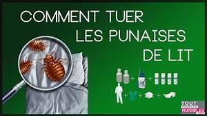 Comment Tuer Les Puces : comment tuer les punaises de lit kit traitement ~ Farleysfitness.com Idées de Décoration