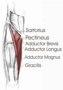 yoga for leg joint pain