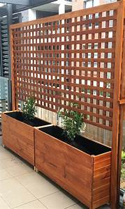 Sichtschutz Zum Bepflanzen : blumenkasten mit rankgitter bepflanzen pflanzen f r den rankkasten ~ Sanjose-hotels-ca.com Haus und Dekorationen