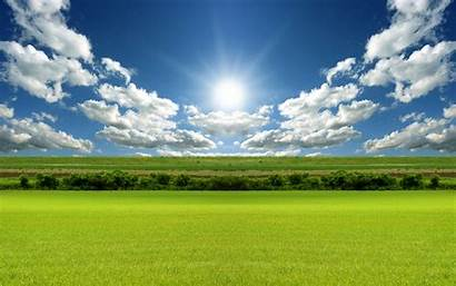 Bright Wallpapers Background Backgrounds Desktop Nature Sunshine