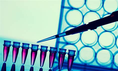 FDA approves Roche's Anti-Müllerian assay to assess ...