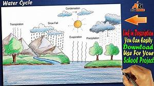 A Water Cycle Diagram