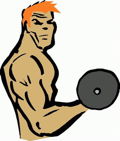 Lifting Clipart Clip Weights Weight Cliparts Weightlifting