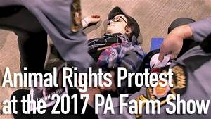 Animal Rights Protest at the 2017 PA Farm Show - YouTube