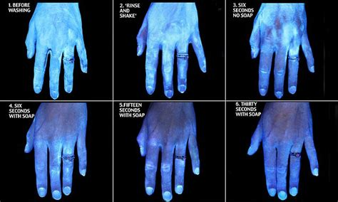 How clean are your hands? The answer may change how you