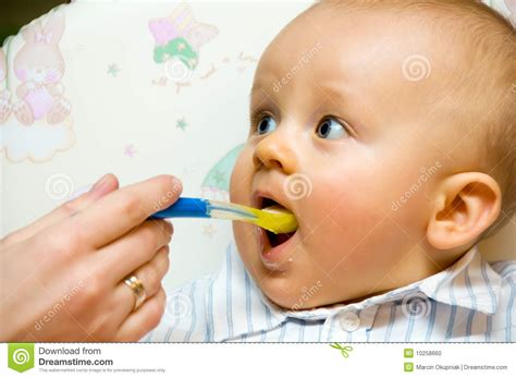 Feeding Baby Boy Stock Photo Image 10258660