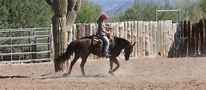Solve Riding Problems With This One Great Tip - Horse&Rider