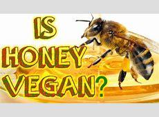 Is Honey Vegan? Healthy? Humane? YouTube