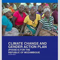 Mozambique Climate Change Gender Action Plan (ccgap) Report  Global Gender Office