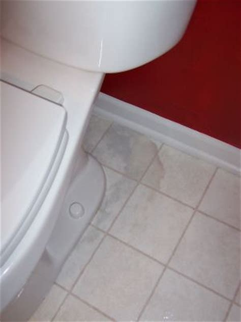 Toilet Drain Leak   Bad Seal?