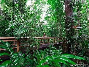 Gallery: 5 rainforest adventures in Costa Rica | CNN Travel