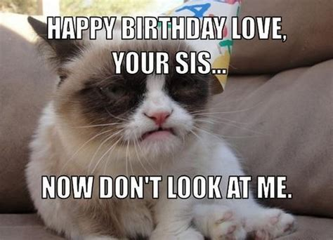Grumpy Cat Meme Happy Birthday - grumpy cat meme happy birthday pictures reference