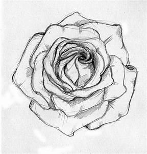 Best 25+ Sketch ideas on Pinterest