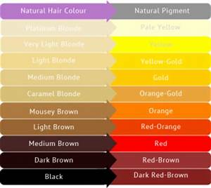 What Causes Blonde Hair to Turn Pink/Orange   Blog ...