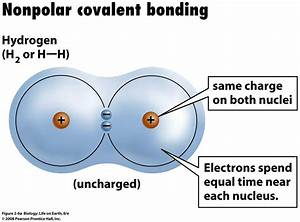How does a polar covalent bond differ from an nonpolar ...