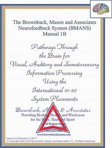 Manual  1b  Functions  Pathways And Eeg Frequencies At