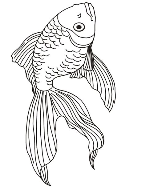 Realistic Fish Coloring Pages | Animal Coloring Pages