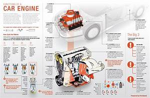 Anatomy Of Your Car
