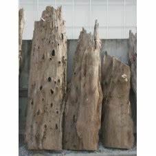 Tronc Bois Flotté : vente de tronc en bois flott 190 cm ~ Dallasstarsshop.com Idées de Décoration