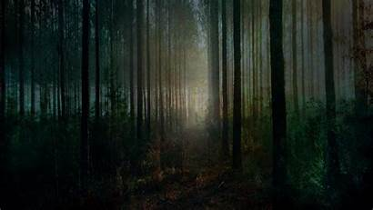 Forest Spooky Halloween Background Wallpapers Desktop Scary