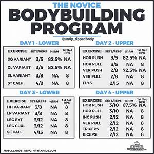 Beginner Bodybuilding Program Spreadsheet By Ripped Body