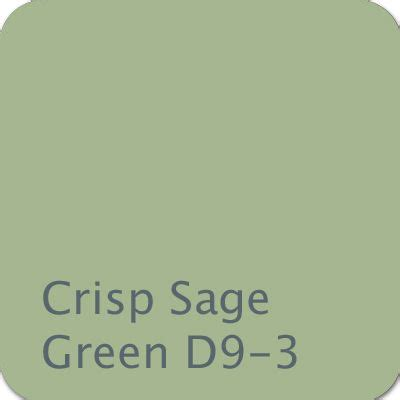 boy color crisp green d9 3 color purple
