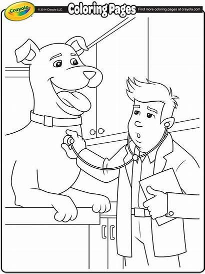 Coloring Veterinarian Pages Printable Crayola Doctor Vet