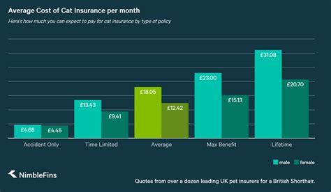 Do vets accept pet insurance? Average Cost of Cat Insurance 2019 | NimbleFins