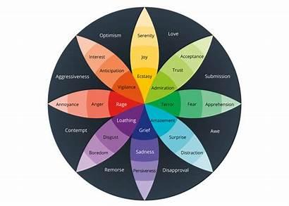Wheel Plutchik Emotion Robert Emotions Vision Research