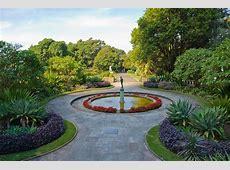 Royal Botanic Gardens Sydney Australia Highlights