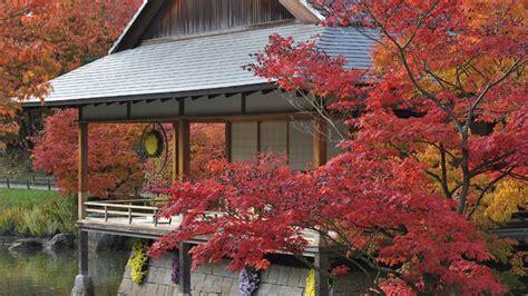 Der Eigene Garten Als Quelle Fuer Die Selbstverwirklichung by Japanischer Ahorn Im Zen Garten 2