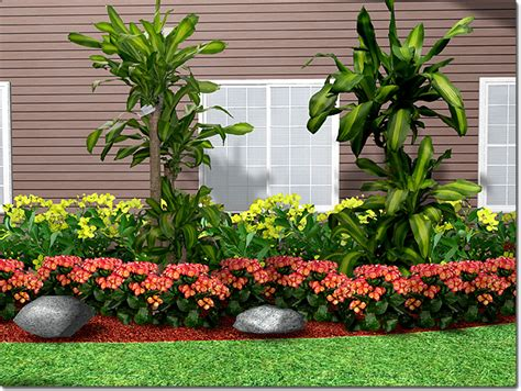types of plants for landscaping adding a plant