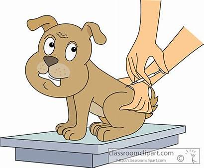 Getting Clipart Dog Vaccination Animal Shots Vaccine