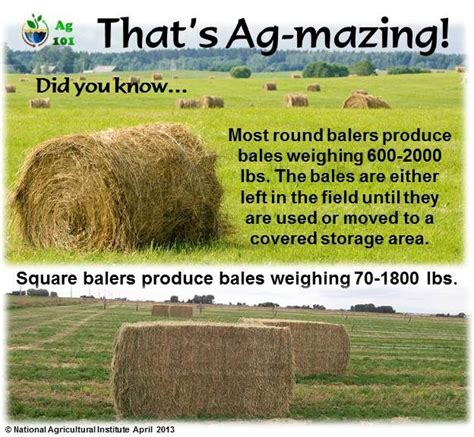 Ag 101   Facebook   Farm facts, Agriculture education, Fun ...