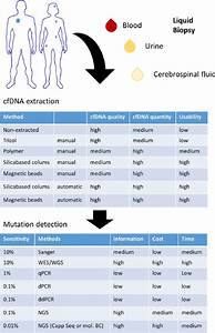 Fig Ure 1 Workflow Of The Ctdna From Patient Over