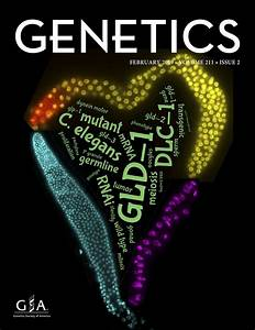 Drosophila As A Genetic Model For Hematopoiesis
