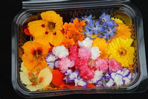 Potpourri Zum Selbermachen by Essbare Bl 252 Ten Kaufen Luzern Blumen Dekoration Ideen