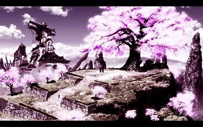 Samurai Cherry Anime Tree Afro Wallpapers Blossom