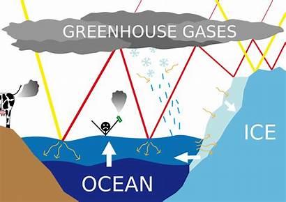 Sea Change Level Climate Rising Levels Rise