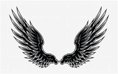 Wings Vector Seekpng