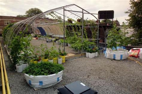 vegetable roof garden vegetable roof gardens urban gardens pinterest