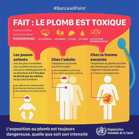 OMS   Intoxication au plomb - Infographies