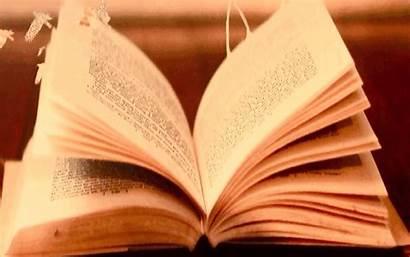 Literatura Livros Livro Mojado Papel Arte Libro