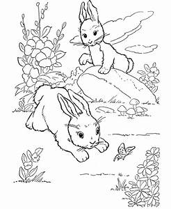 Winter Animals Coloring Pages - Coloring Home
