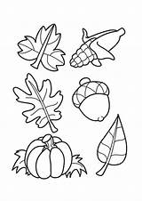 Acorns Leaves Coloring Pages Printable Leaf Sheets Parentune Child Assignment Flowers sketch template