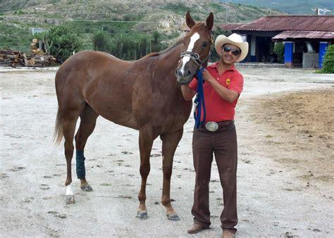 mexican horse racing oaxaca horses qh trainer unaware traveler miss