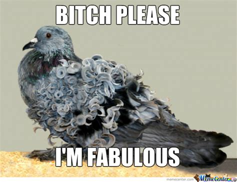 Pigeon Memes - fabulous pigeon by recyclebin meme center